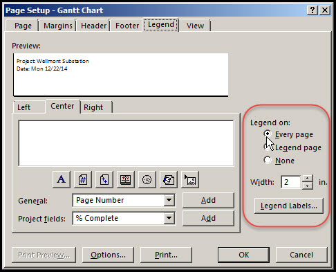Microsoft Project Print To PDF Options Fig 19
