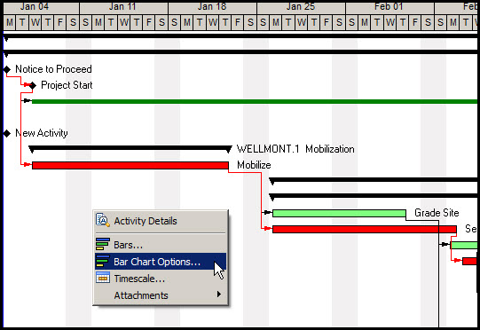 Inserting Gantt Chart Gridlines P6Fig 5