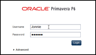 Primavera P6 EPPM User PrivilegesFig 12