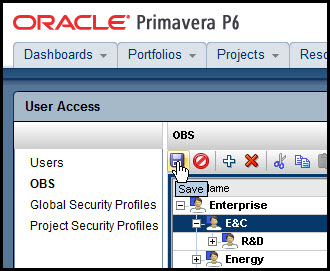Primavera P6 EPPM User PrivilegesFig 6