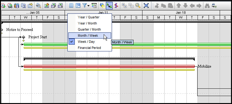Printing Gantt Charts in P6 EPPM Fig 2
