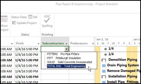 Microsoft Project Custom Fields Fig 11