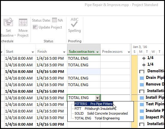 Microsoft Project Custom Fields Fig 13