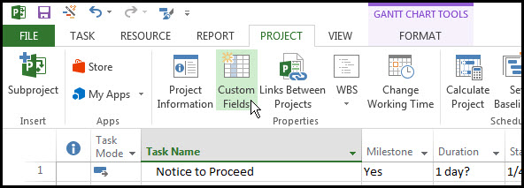 Microsoft Project Custom Fields Fig 2