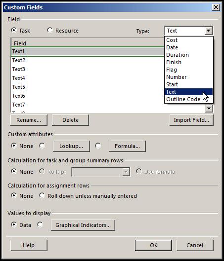 Microsoft Project Custom Fields Fig 3