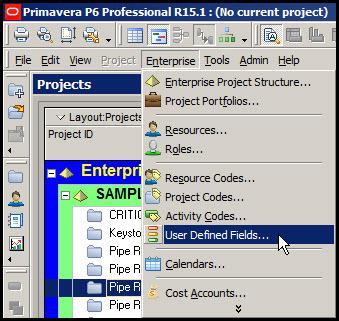 Microsoft Project Custom Fields to P6Fig 4