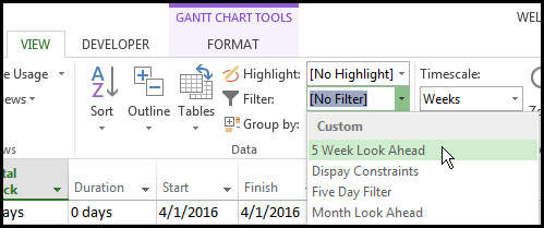 Microsoft Project Look Ahead Filter Fig 13