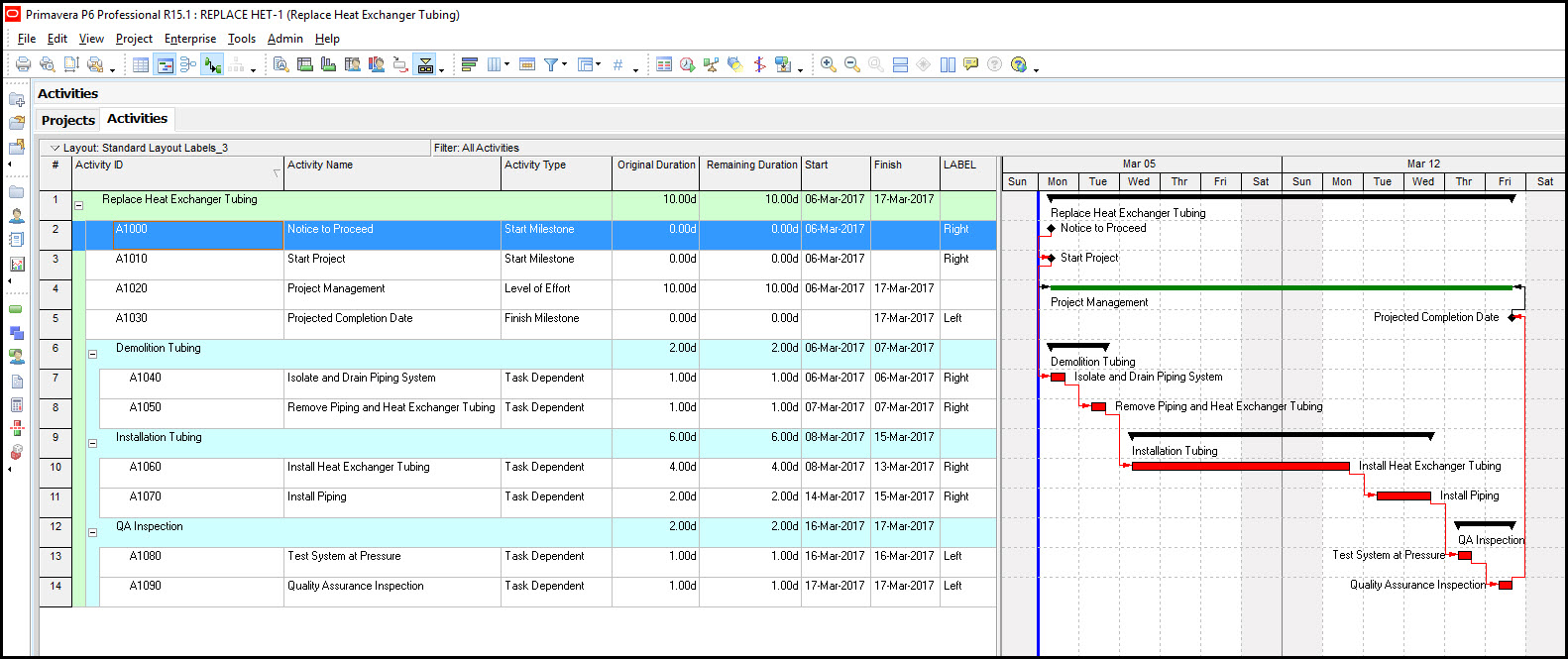 P6 Gantt Chart Activity Labels Timescale Compression Fig 14