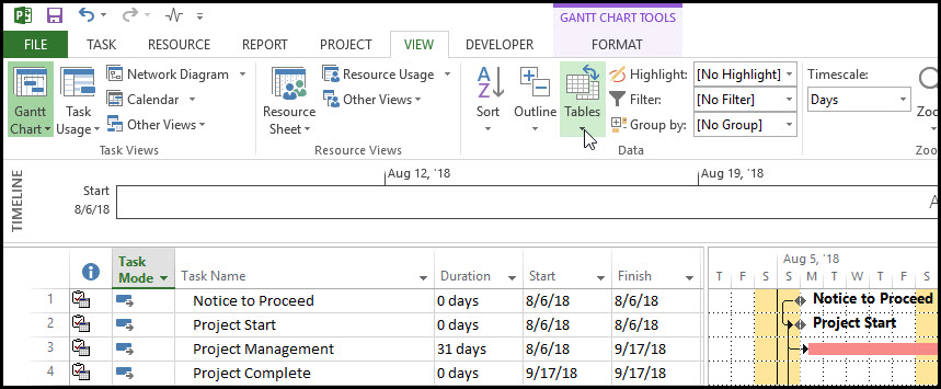 Microsoft Project Row Height Adjustment Quick Tip 2