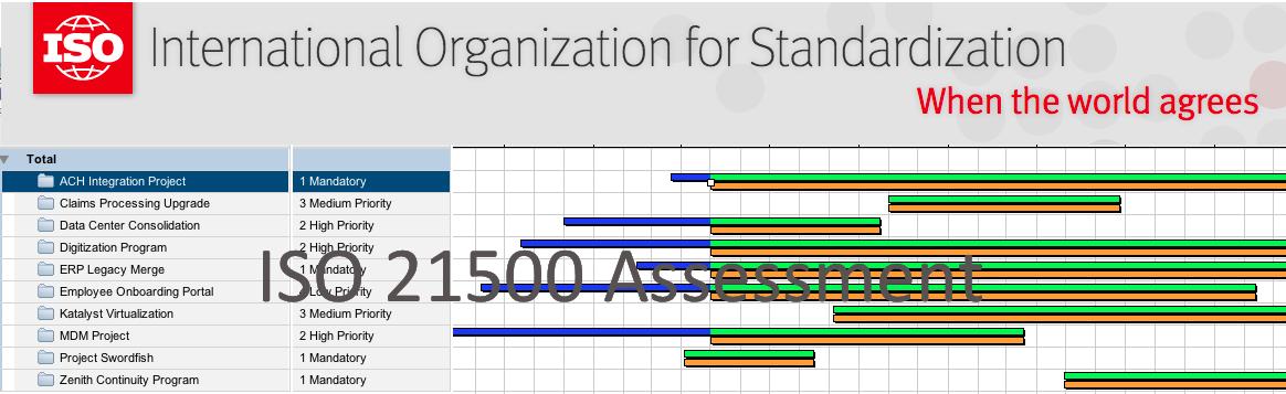 ISO 21500 Assessment