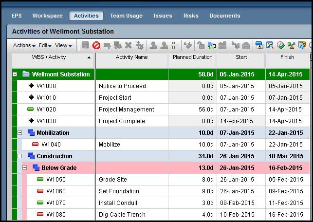 Primavera P6 ePPM Schedule
