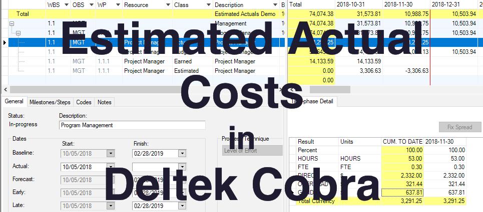 Estimated Actual Costs in Deltek Cobra Banner