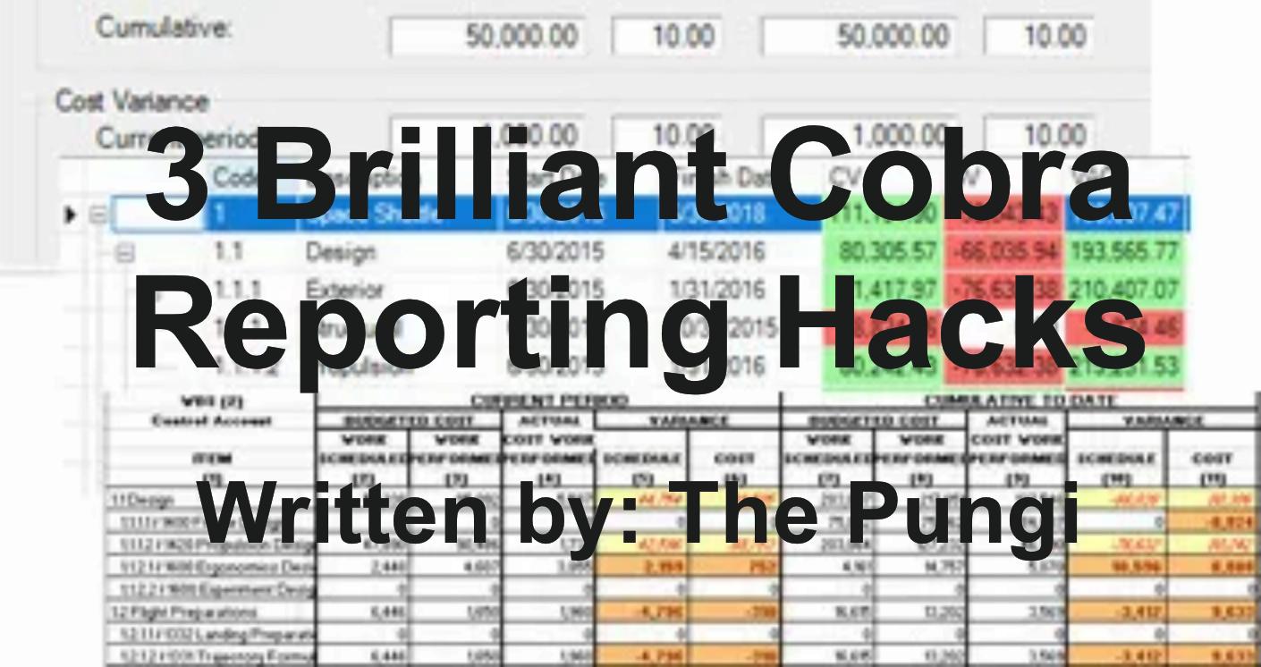 Cobra Reporting Hacks
