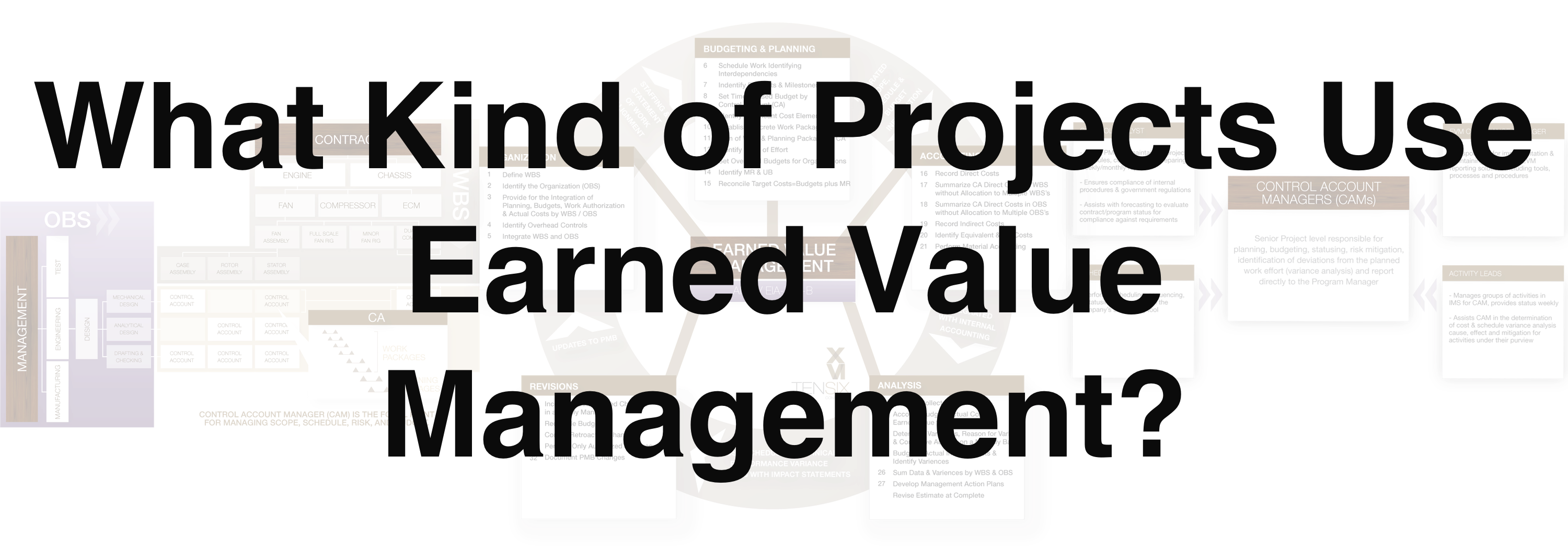 Projects Use Earned Value Management