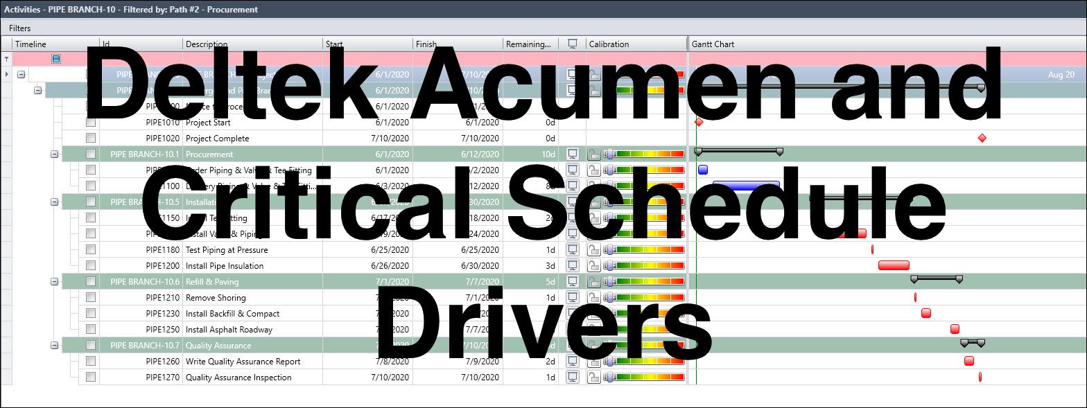 Deltek Acumen Critical Schedule Drivers