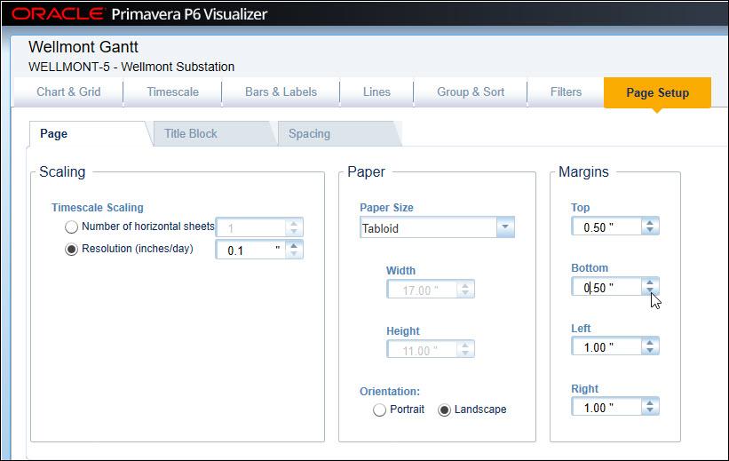 Visualizer Page Setup