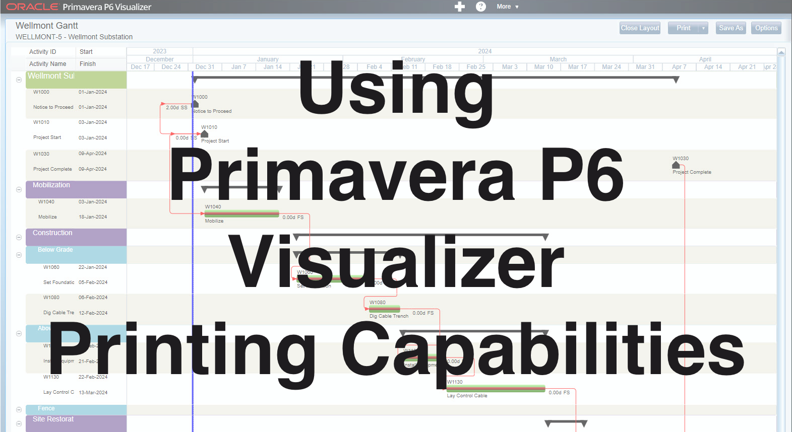 Primavera P6 Visualizer Printing Capabilities